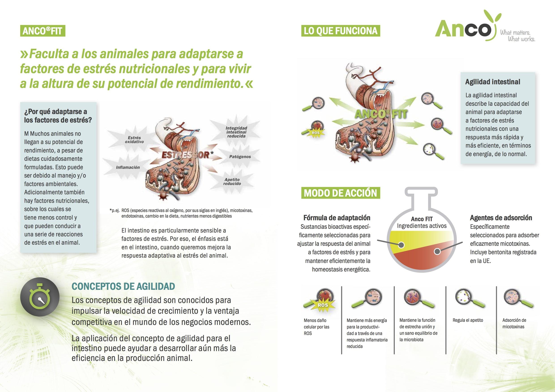 anco2